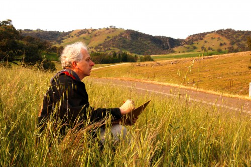 Nelson sketching plein air