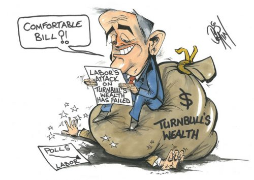 turnbull's wealth