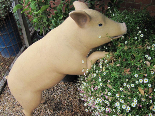 A stone pig… for a little fun consider something from the seemingly limitless range of statues and sculptures.