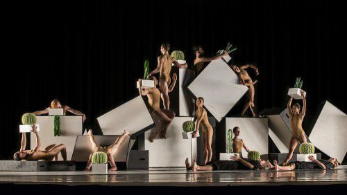 Sydney Dance Company Cacti (2). Photo by Peter Greig
