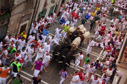 """Running of the bulls in Pamplona... in Canberra we have the """"Running of the Red Lights""""."""