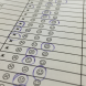 Candidate Kim Fischer's smiley-face rating system.