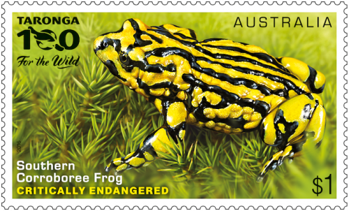 "The Southern Corroboree Frog stamp from the new ""Endangered Wildlife"" collection."