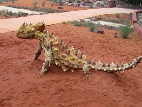 Look out for the dragons in the Red Centre Garden.