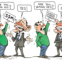 Abbott SSM Yes No
