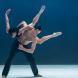 Sydney Dance Company. Photo by Vishal Pandey