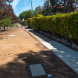 """The """"heritage"""" footpath in Manuka… It is mainly dirt – or mud when it rains. Photo by Paul Costigan"""