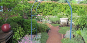 A garden bed blooming as a result of drip irrigation.