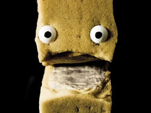 "The hero, ""Bruce"", pictured, is a hand puppet made from a rectangular piece of sponge with eyes and a mouth."